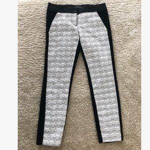Express Columnist Dress Slack Pants